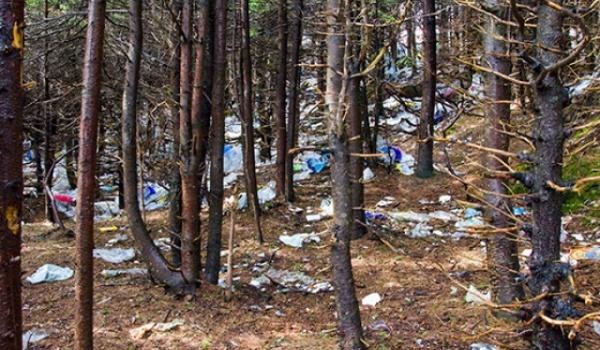 ¿Biodegradable? Ni en la Eternidad